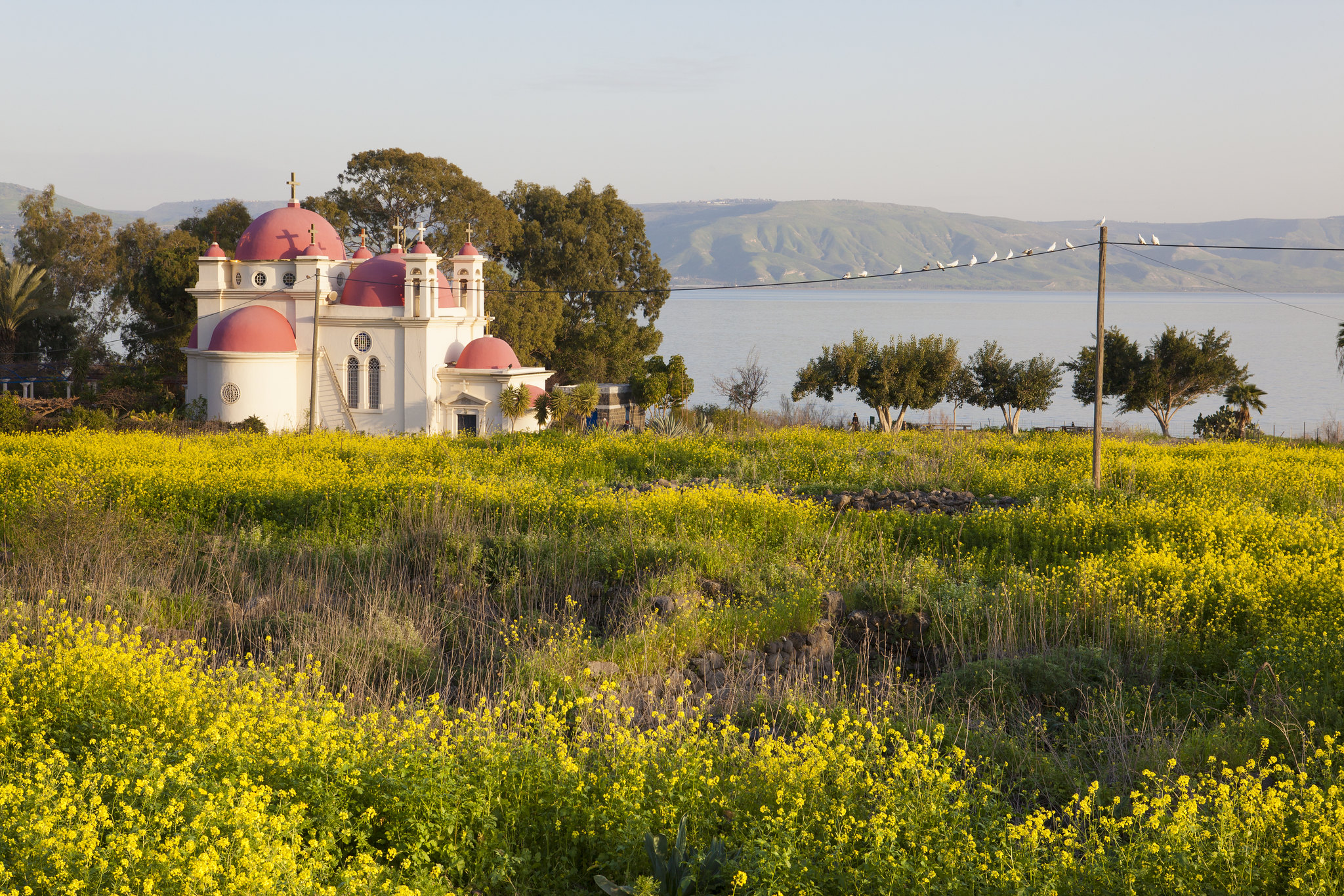 Biblical Highlights of the Galilee
